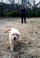 At Fultondale Dog Park I